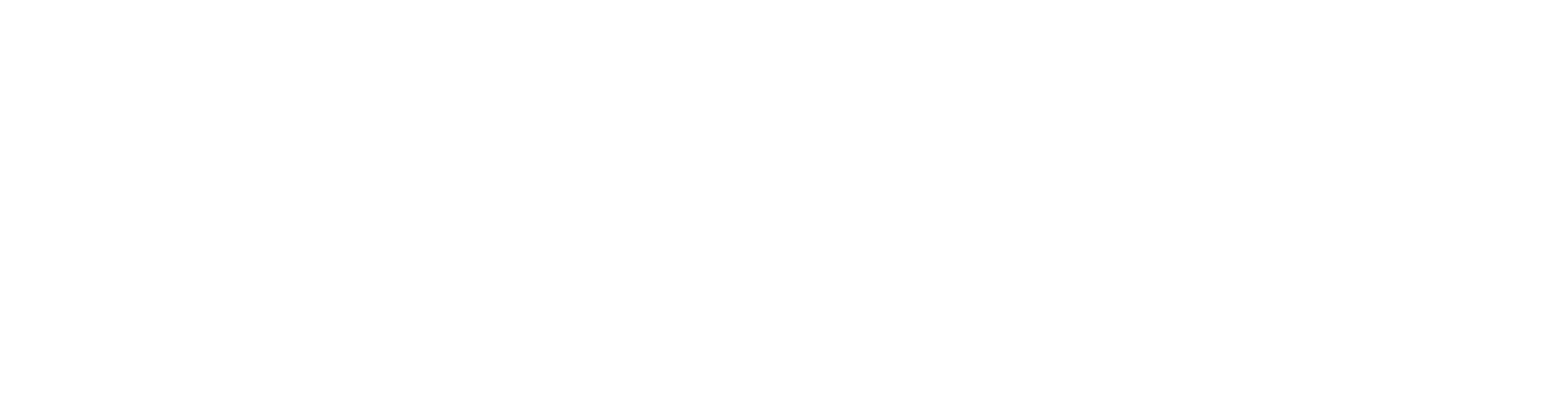 Transparent background (white logo)